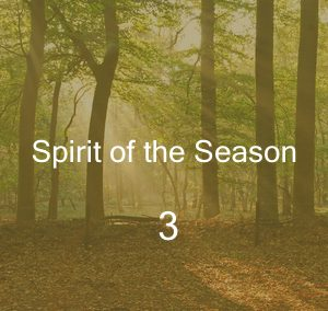 Spirit of the Season 3